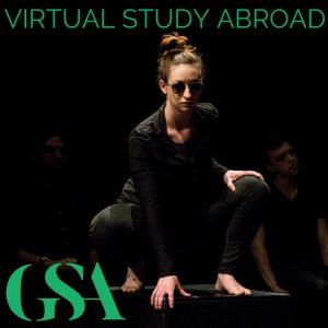 virtual study abroad